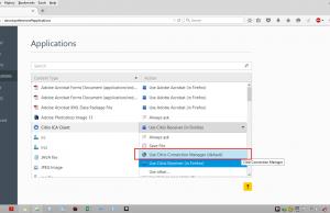Use Citrix Connection Manager (default)